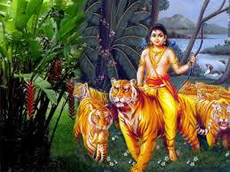 Manikandan with tigers